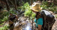 Hike @ Switzer Falls, Upper Arroyo Seco #8