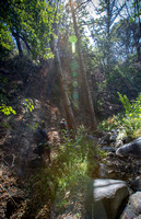 Hike @ Switzer Falls, Upper Arroyo Seco #11