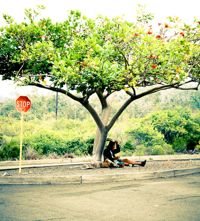 Restring Bum under a Tree, on The Big Island, Hawaii, by Dean Chiang, Xyclopx